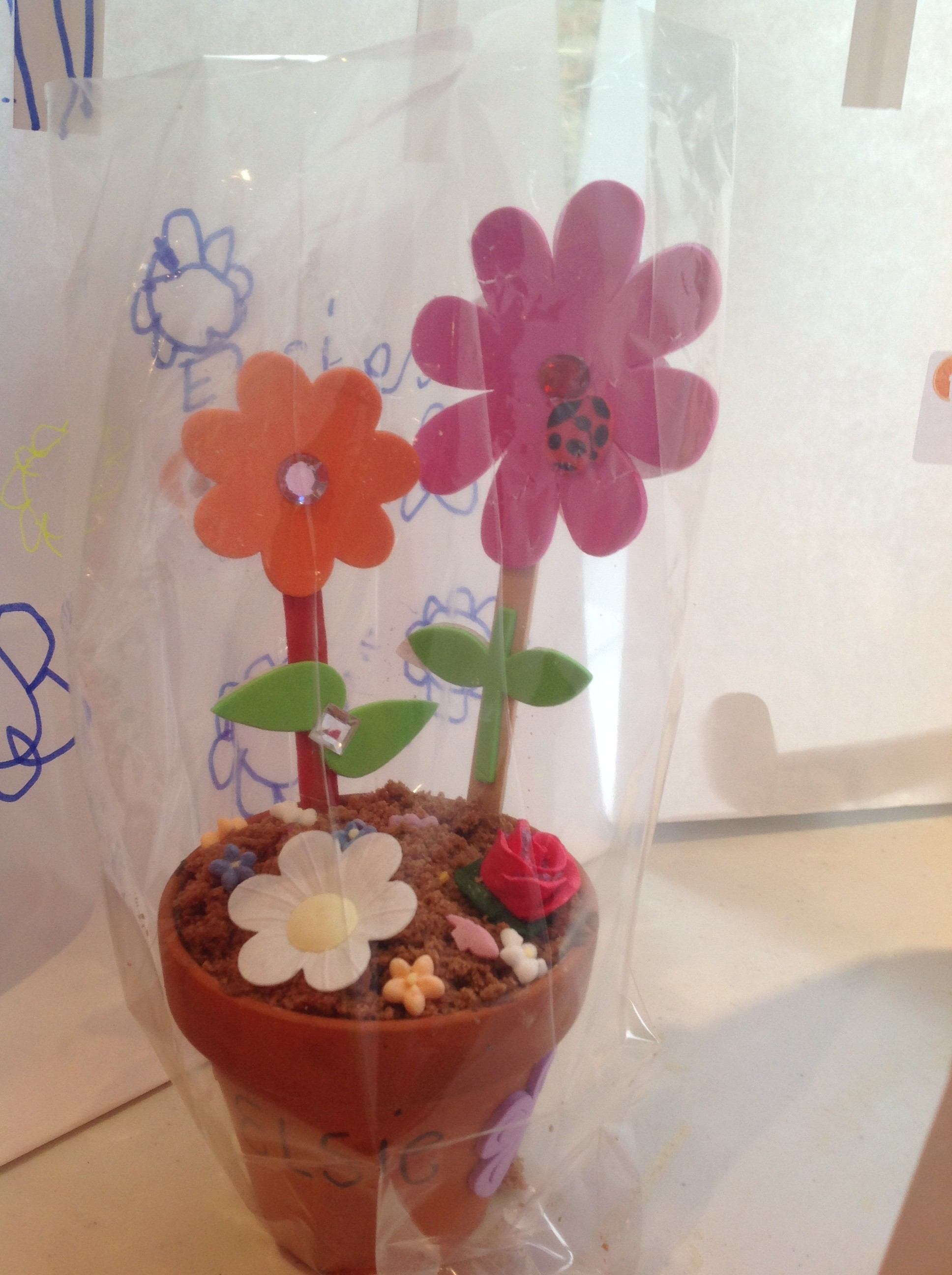chocflowerpot3
